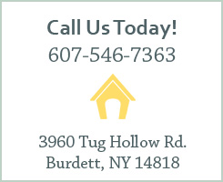 Call us today at 607-546-7363. Our address is 3960 Tug Hollow Rd., Burdett, NY 14818